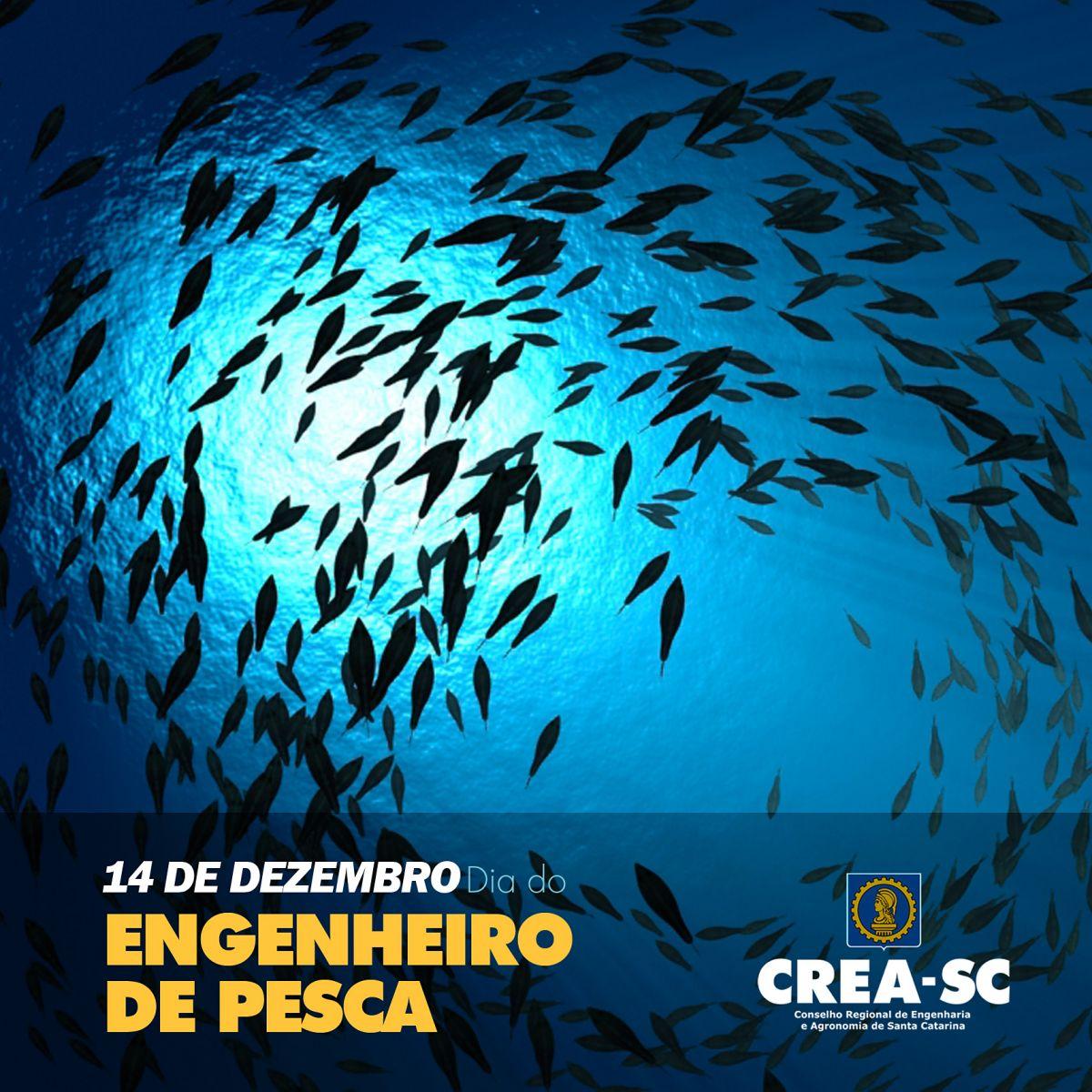 Resultado de imagem para Dia do Engenheiro de Pesca